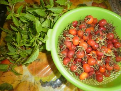 lemon basil and rose hips