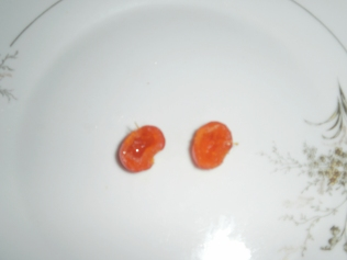 rose hip halves without seeds